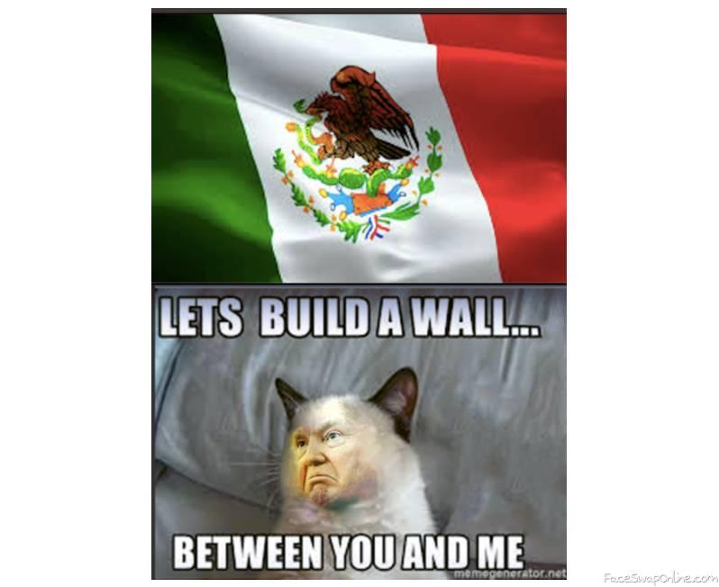 Grumpy trump-- mexico vs us wall meme