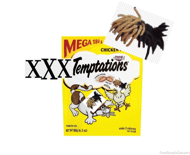 XXtemptation