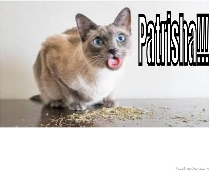 Patrisha