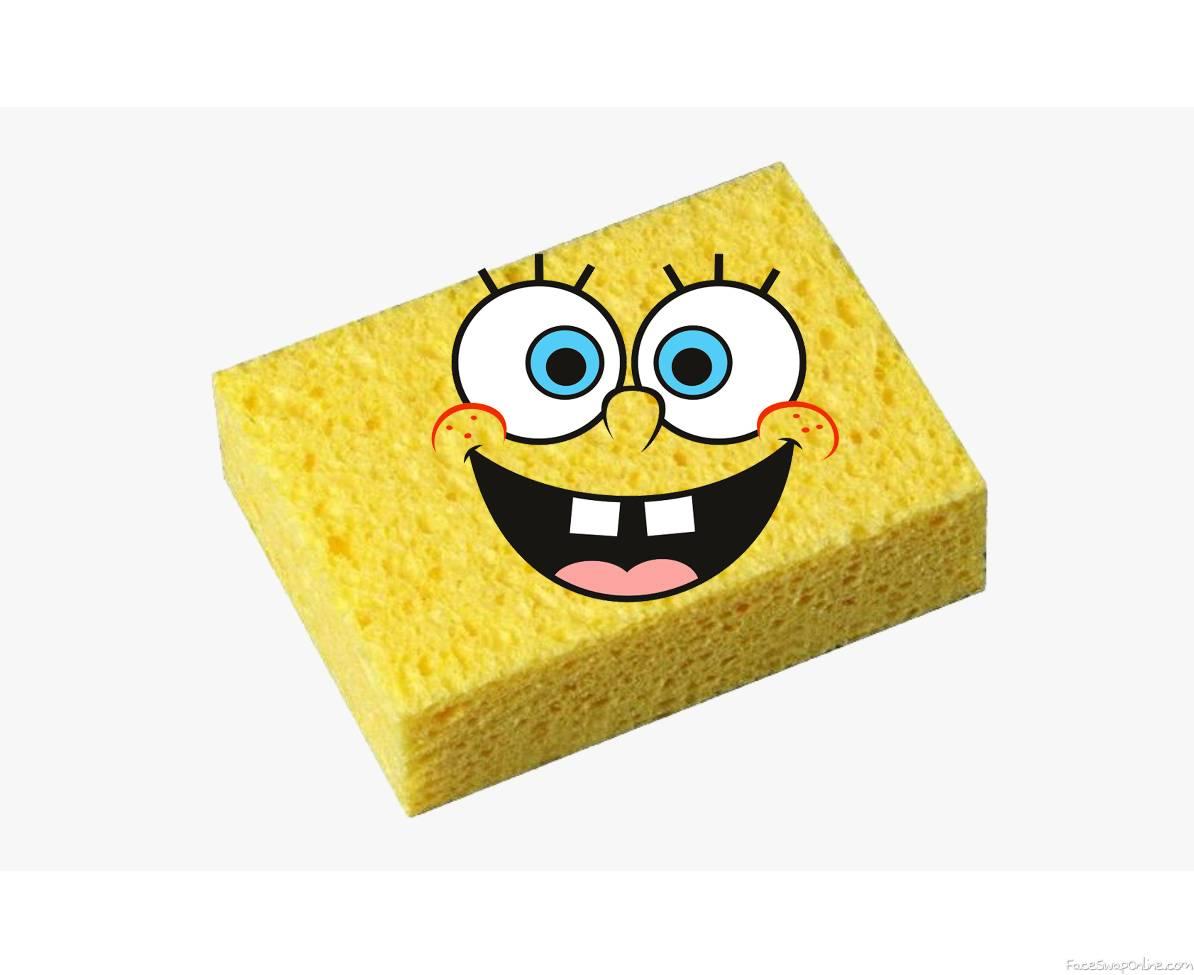 Real Spongebob