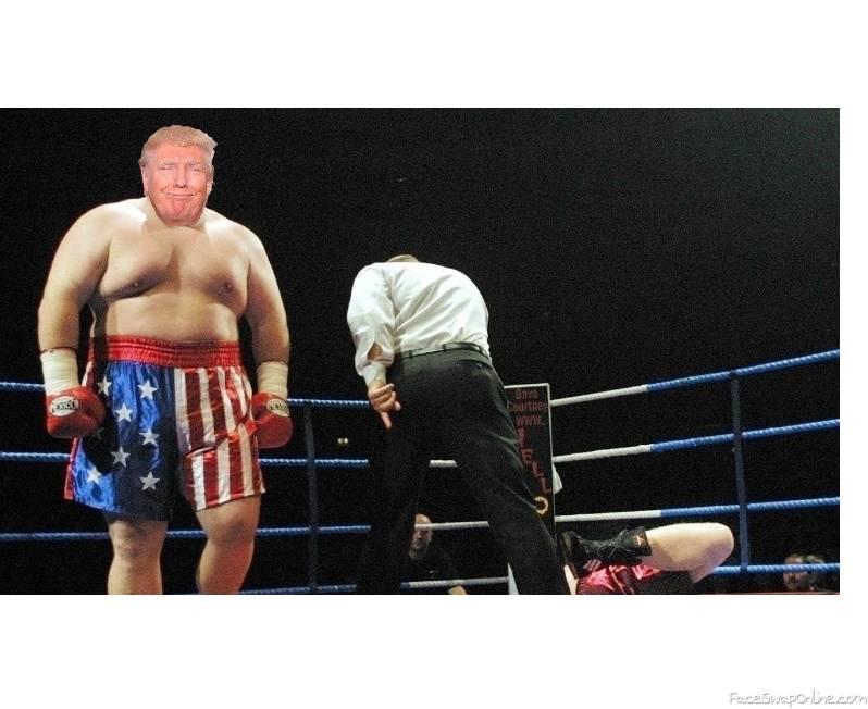 Trump boxer