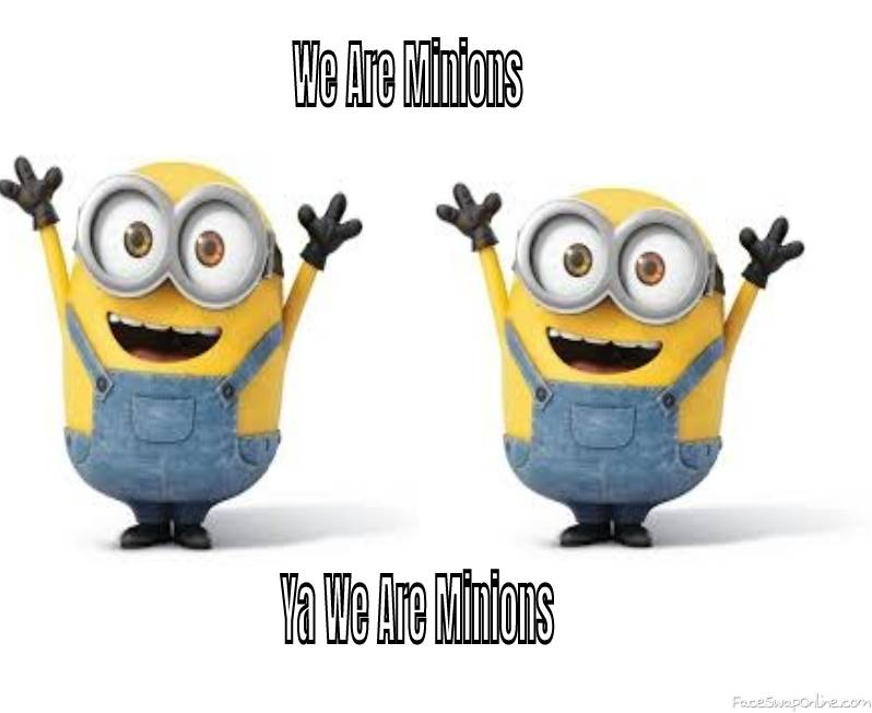 We Know You Are Minions