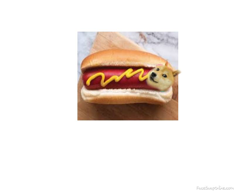 the hot DOGE