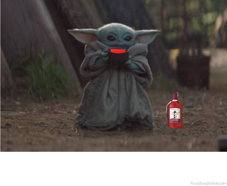 Are You Old Enough To Drink Yoda??