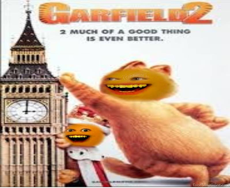 Garfield 2 on DVD!