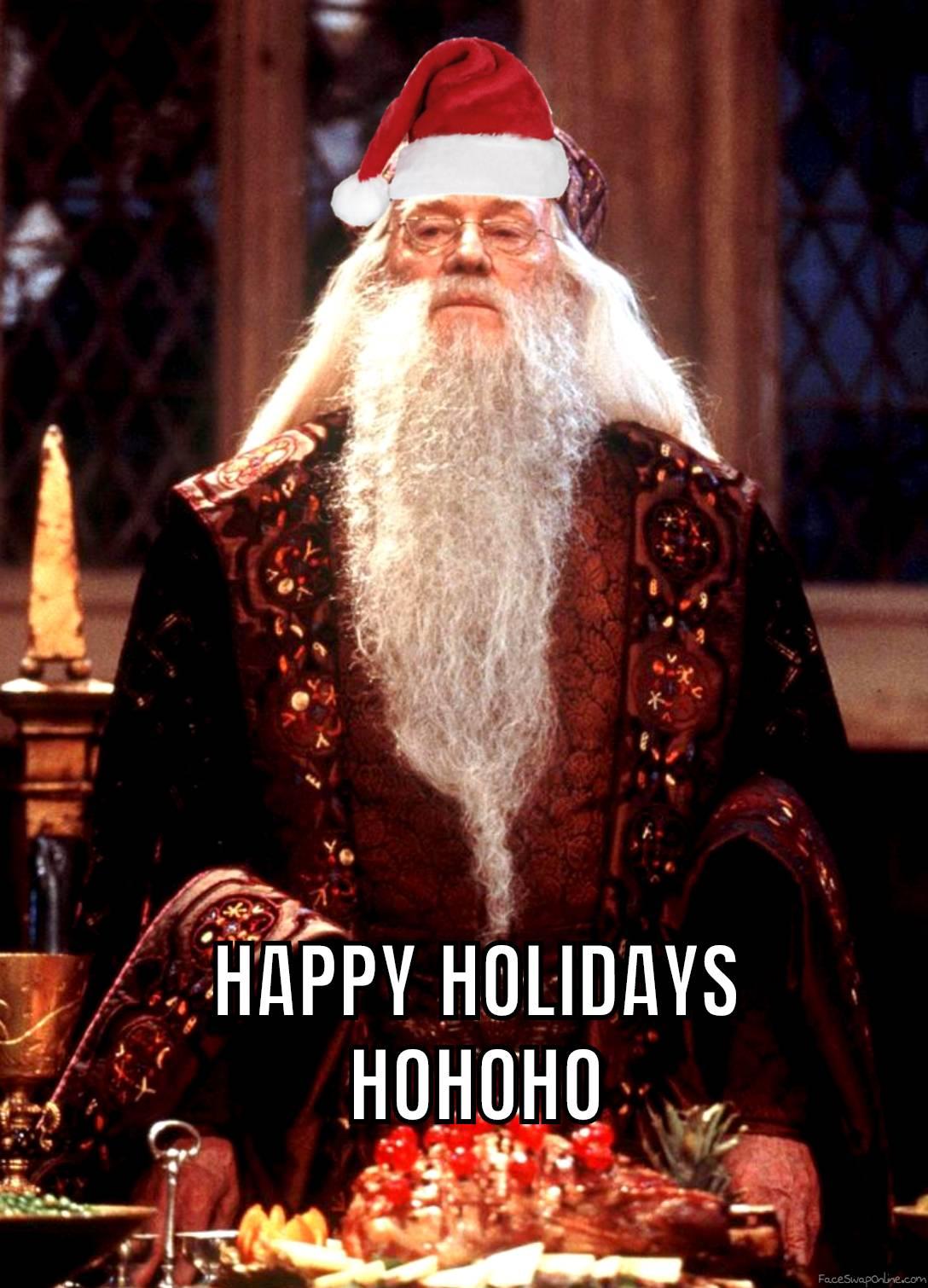 Santa Dumbledore