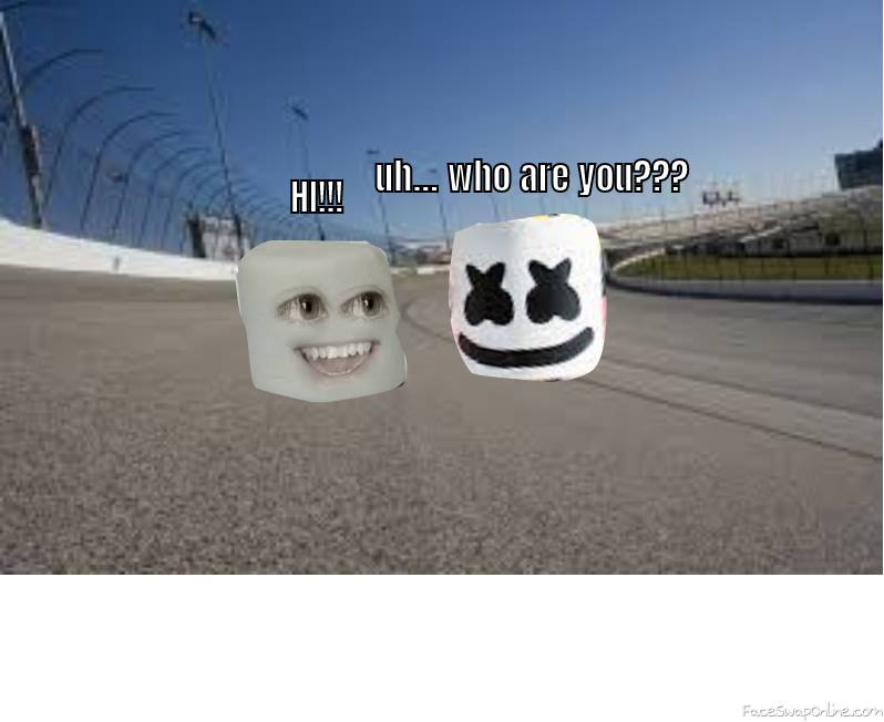 marshmallow meets marshmallow