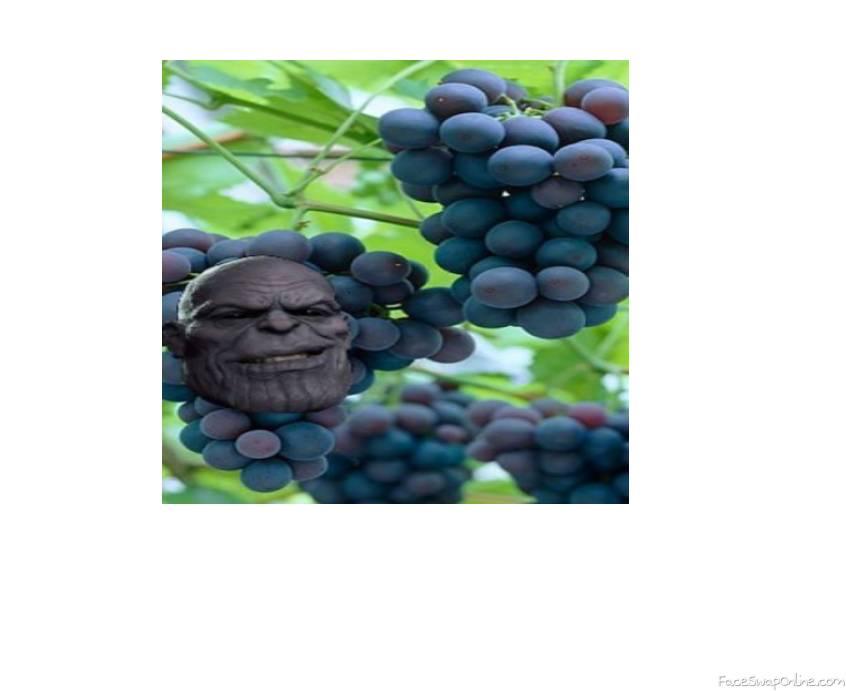 thanos grape meme
