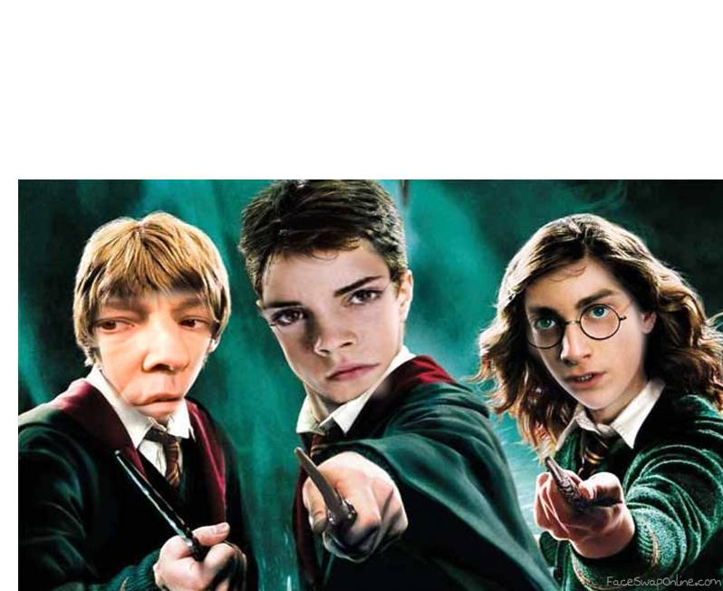 Piton Weasley, Hermione Potter and  Harry Granger