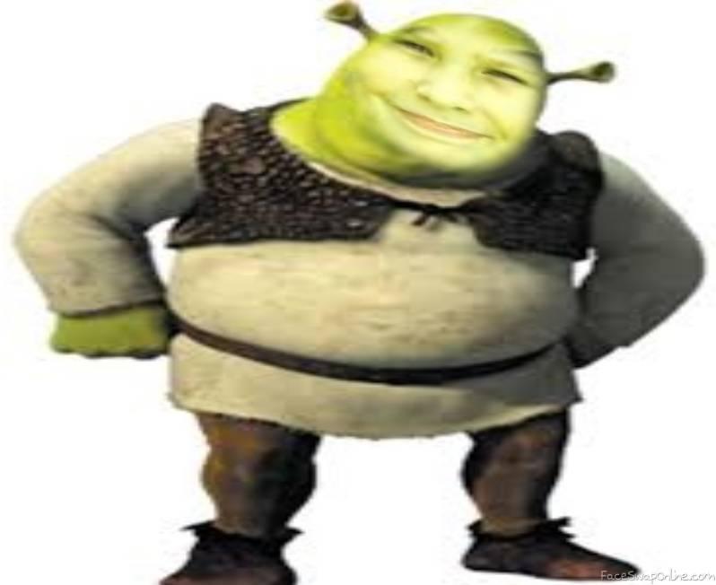 Shrek kid