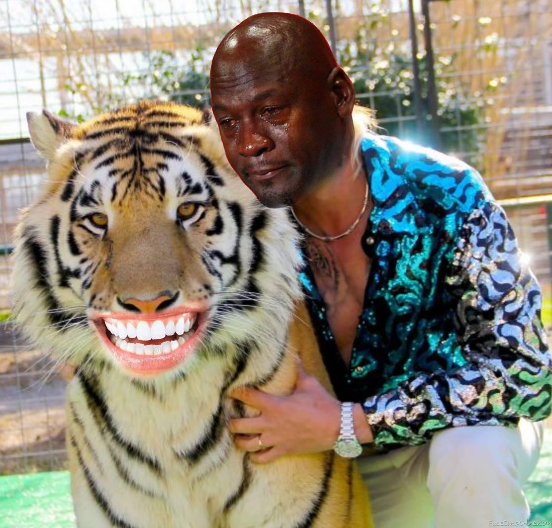 Smiling Tiger with Crying Jordan