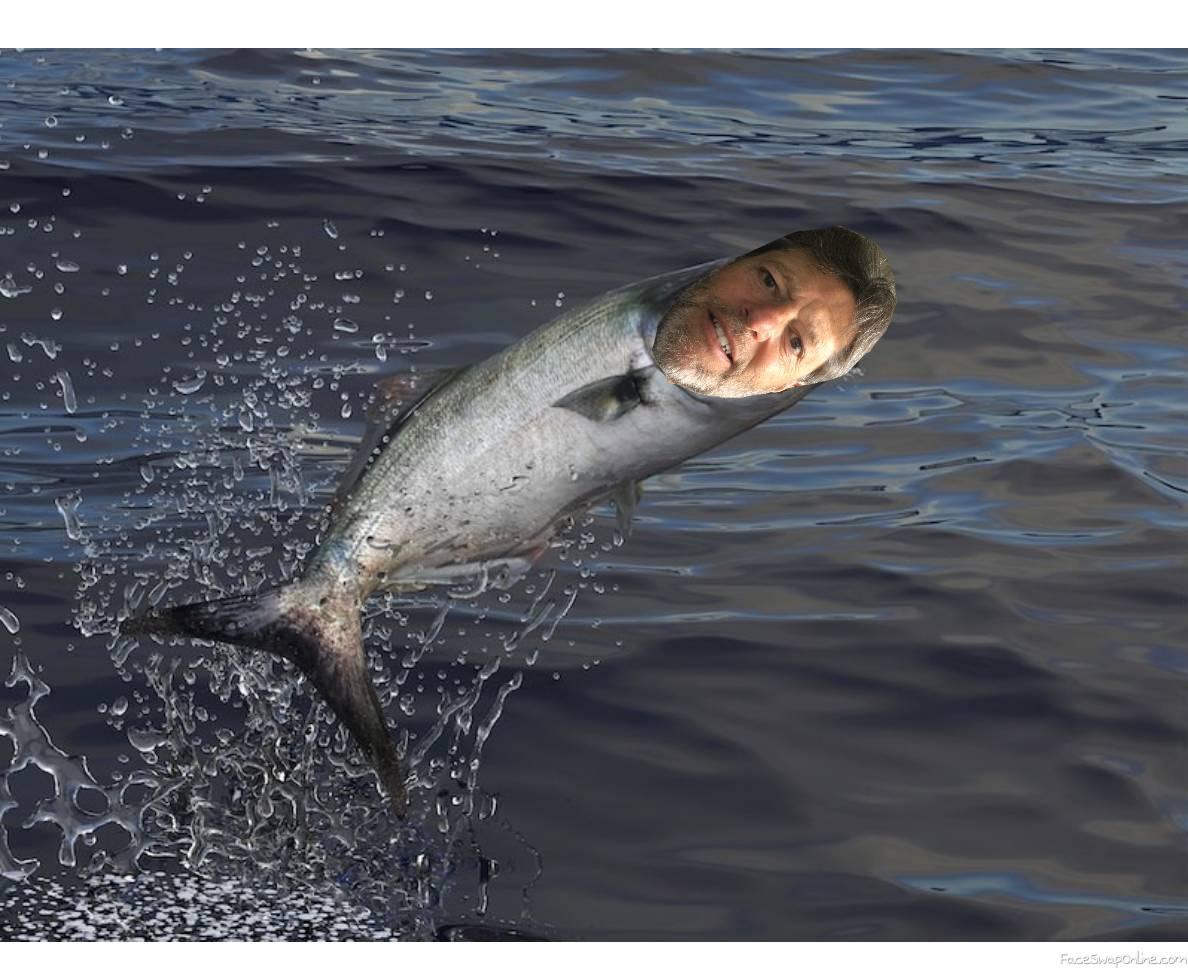 SwimWithFish2