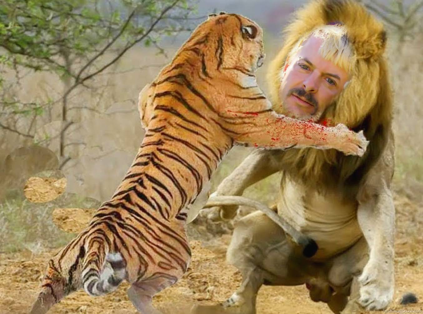 Tiger King VS Lion King