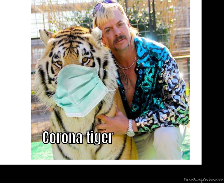 Who Said That tigers couldn't have the corona