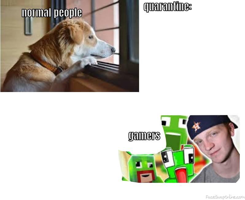 quarantine meme