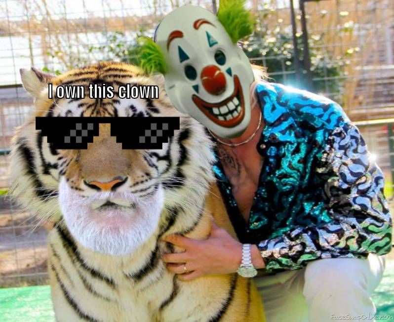 tiger owns clown