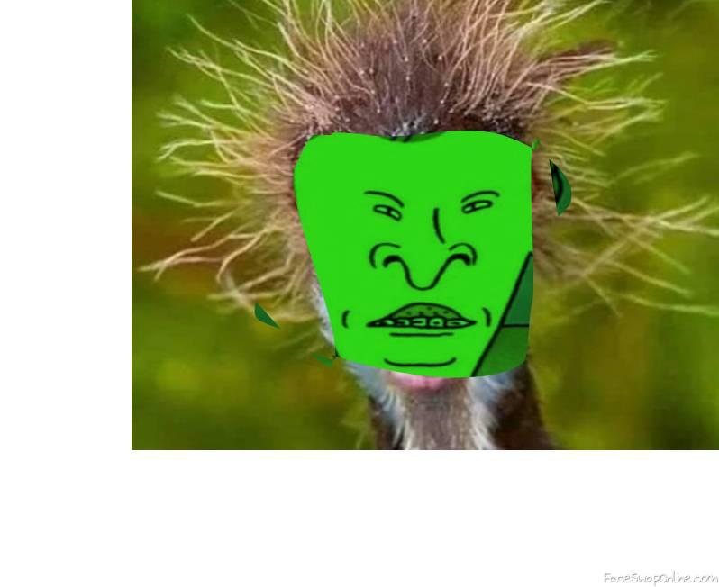 Butthead Bird