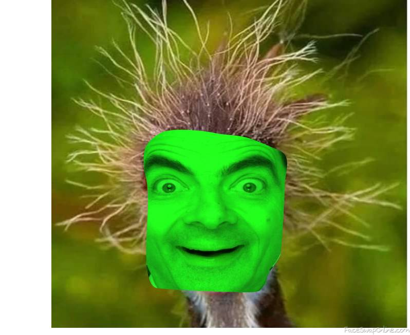 Sick Mr Bean Bird
