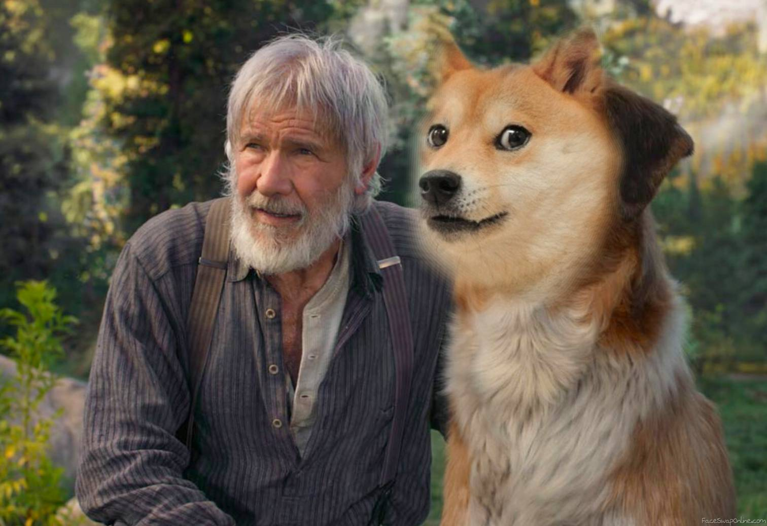 The Call of the Wild doge