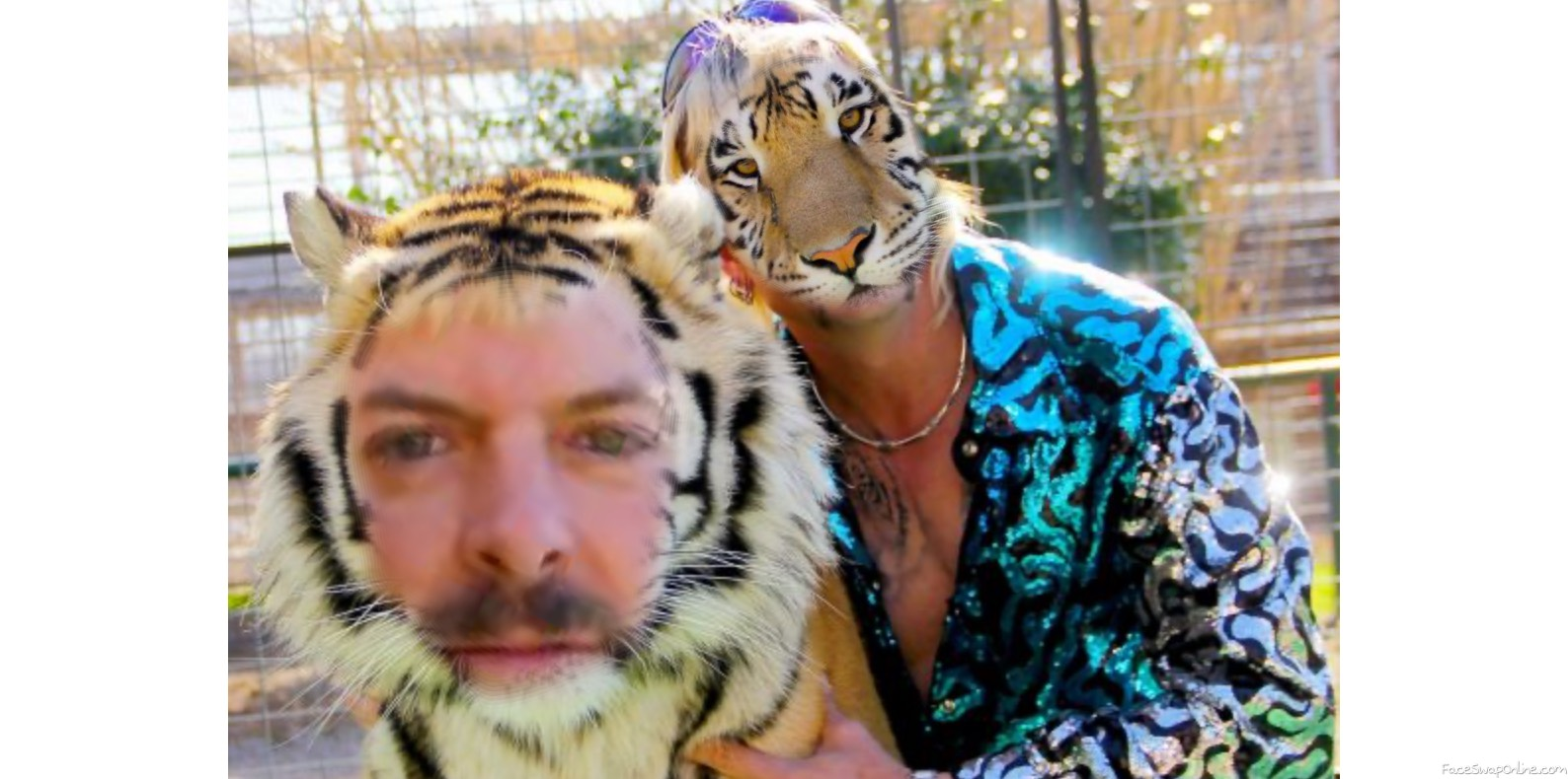 Tiger King Face-Swap