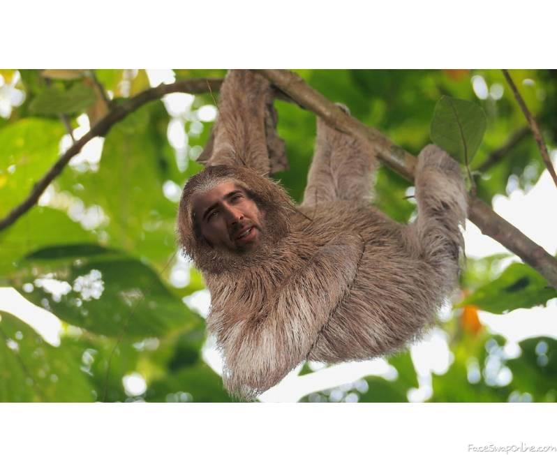 nick sloth2