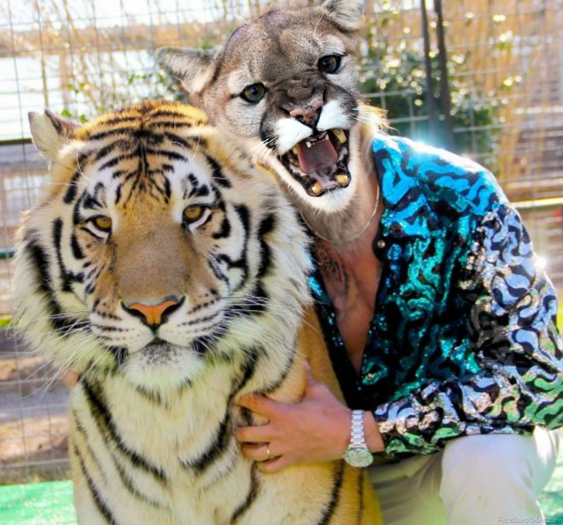 Cougar with Tiger mashup