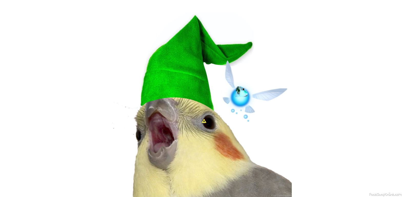 Birb of Time