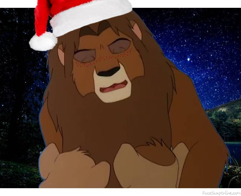REEEEEEEE. Simba in the hat of Santa Claus