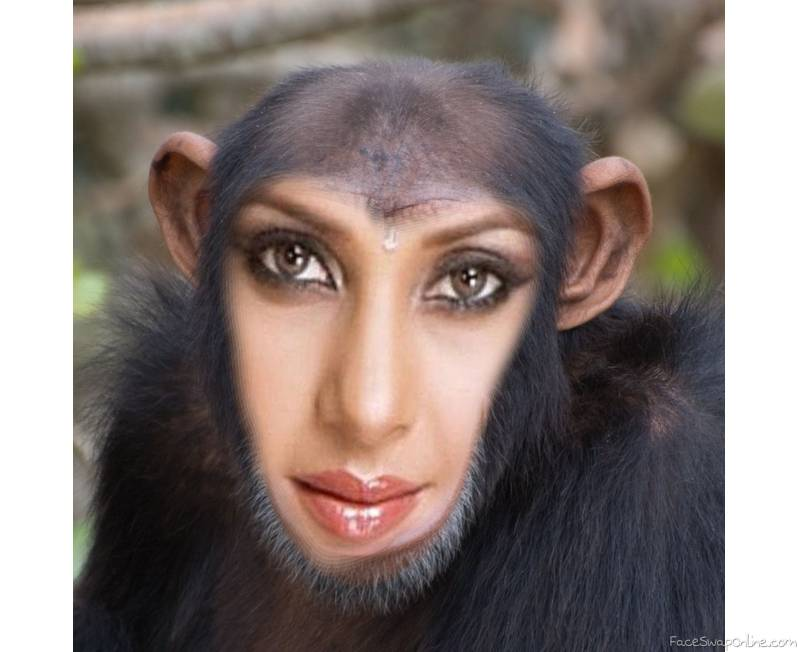 Jennifer Winget is a chimp