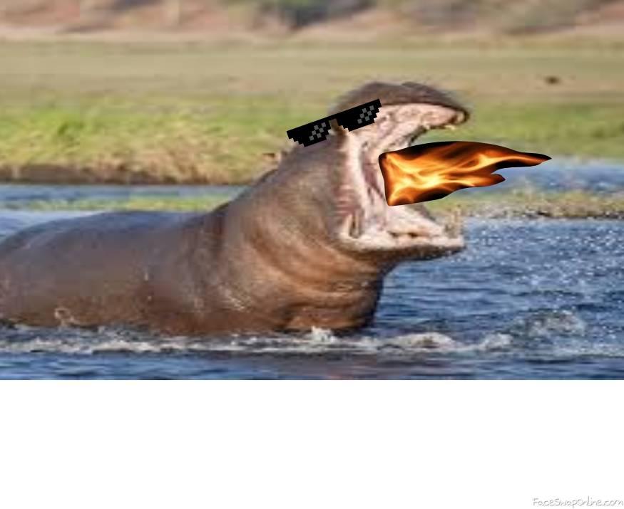 SAVAGE HIPPO