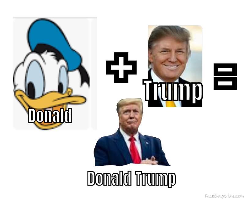 Donald + trump =.....