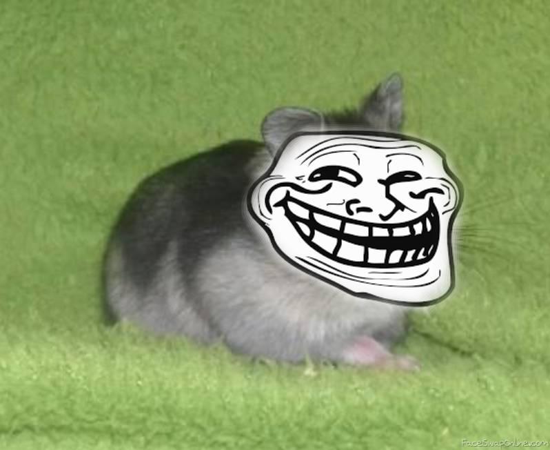 troll hamsterr