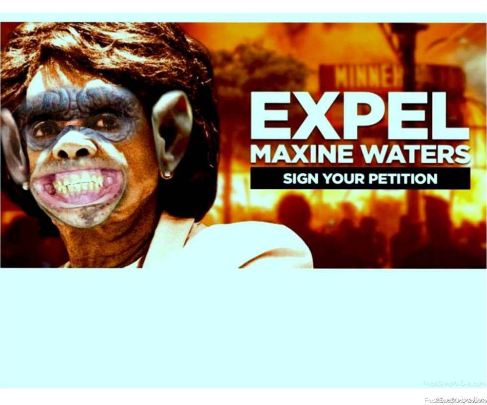 Low IQ Mad the ape Maxine Watters