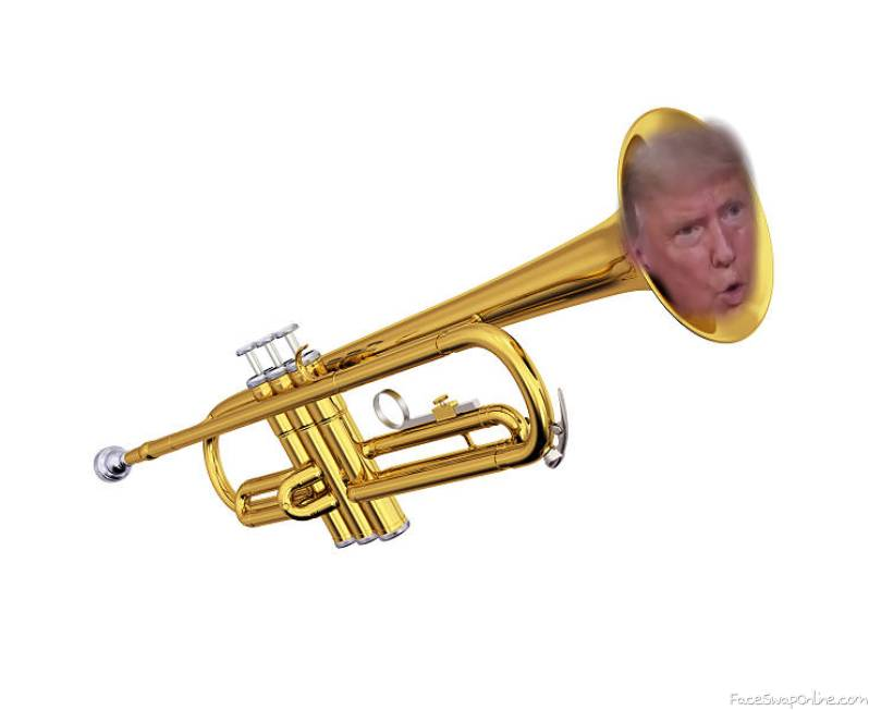 donald the trumpetier