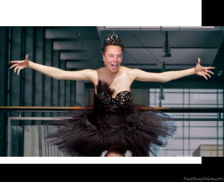 """Elon """"black swan"""" Musk"""