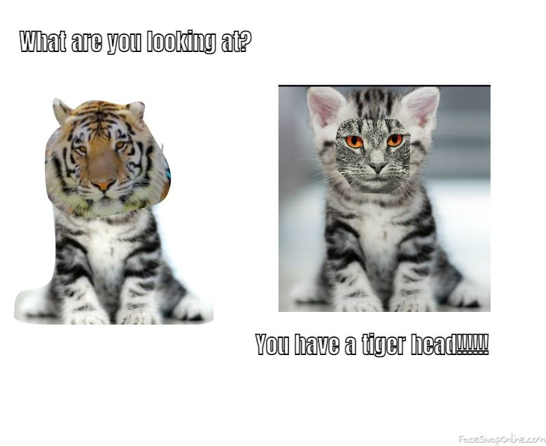 Tiger head!!!!