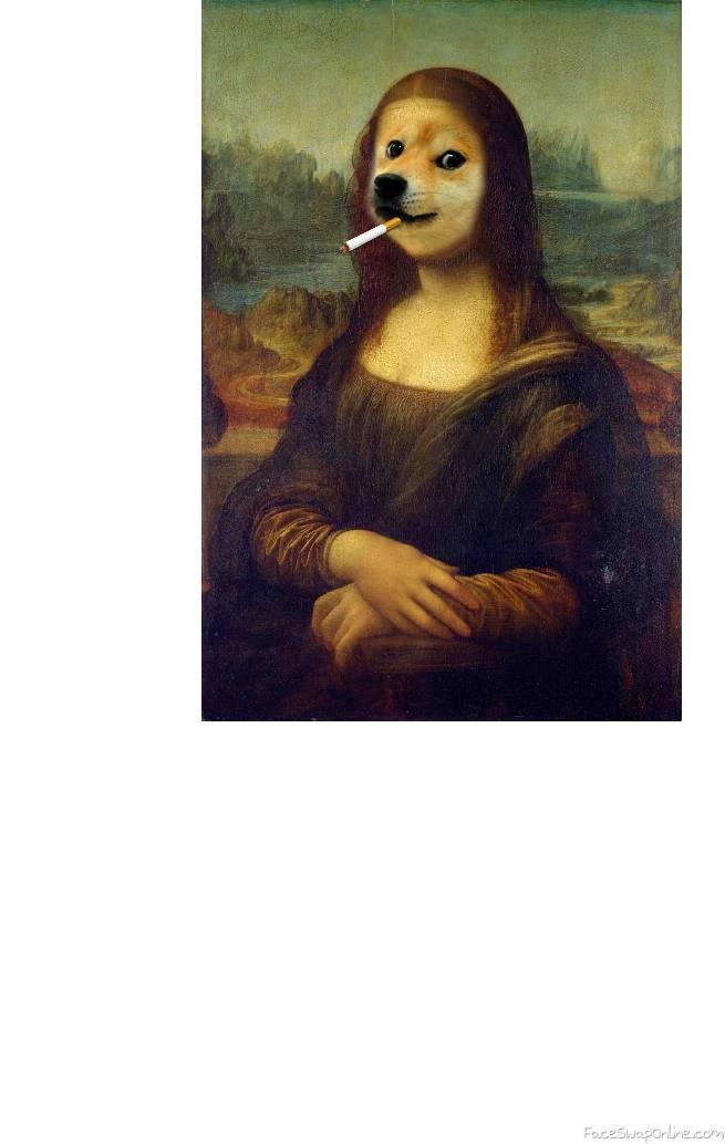 Mona Doge 🐶🤣😂