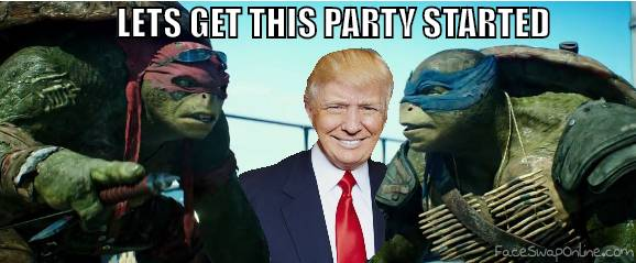 Donald Turtles