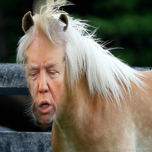 If Donald Trump was a horse