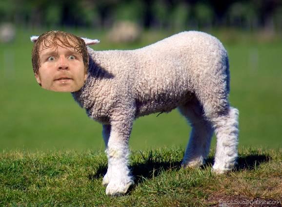 Lean Lamb Roast