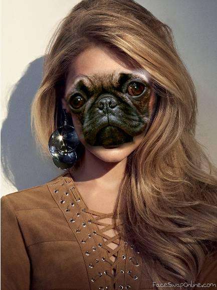 Pug Gigi