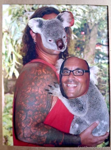 The Koala Kid