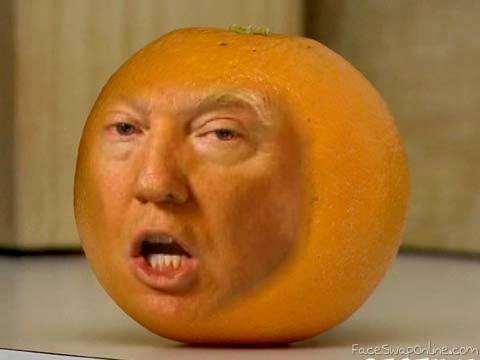 The Orange Politician