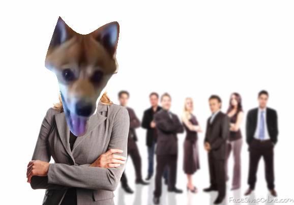 When ur a dog