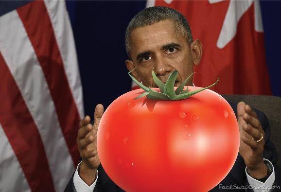 obama shows his tomato